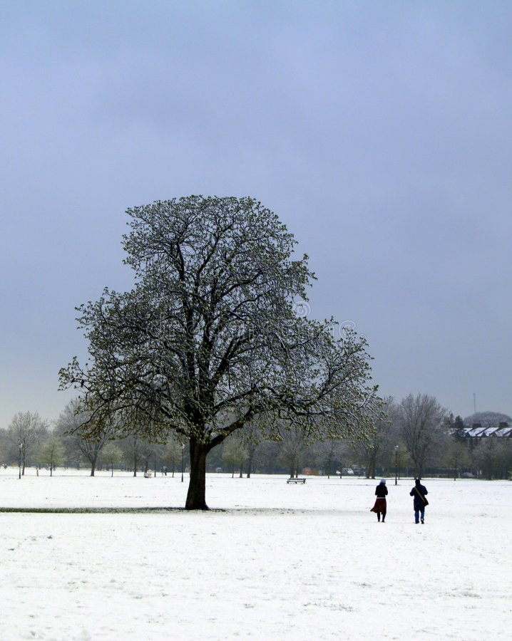 Weg im Schnee lizenzfreie stockfotografie