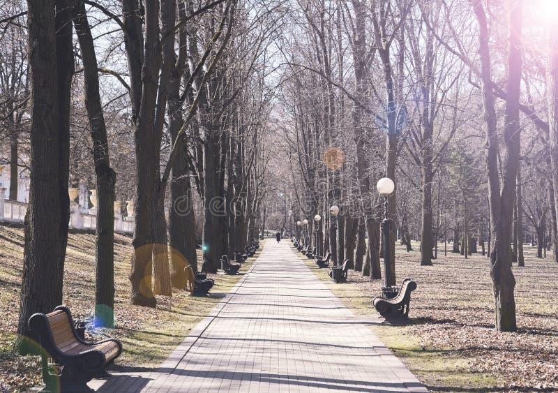 weg met banken voor rust in het park stock afbeelding