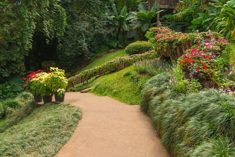 weg met groen gras in tuin bij openbaar park royalty-vrije stock foto's