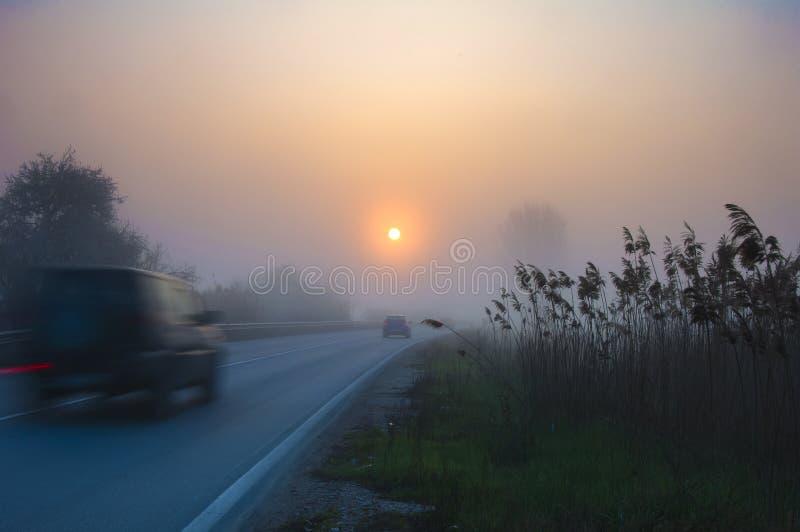 Weg in mist met auto's royalty-vrije stock fotografie