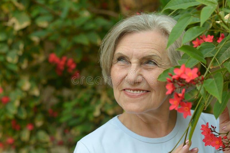 Weg mit roten Blumen stockfoto