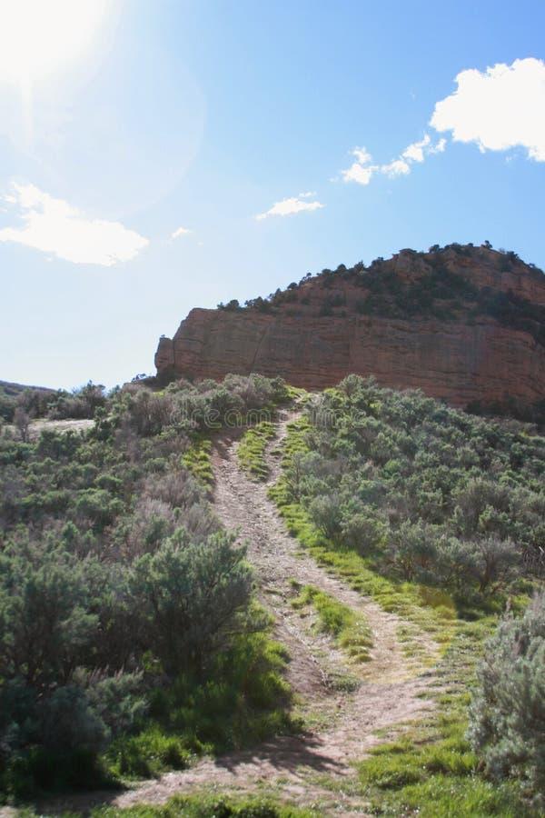 Weg omhoog de berg door borstel aan een grote rotsvorming stock foto