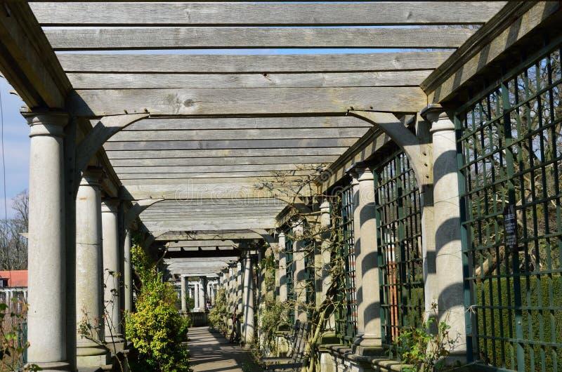 Weg onderaan houten pergola royalty-vrije stock fotografie
