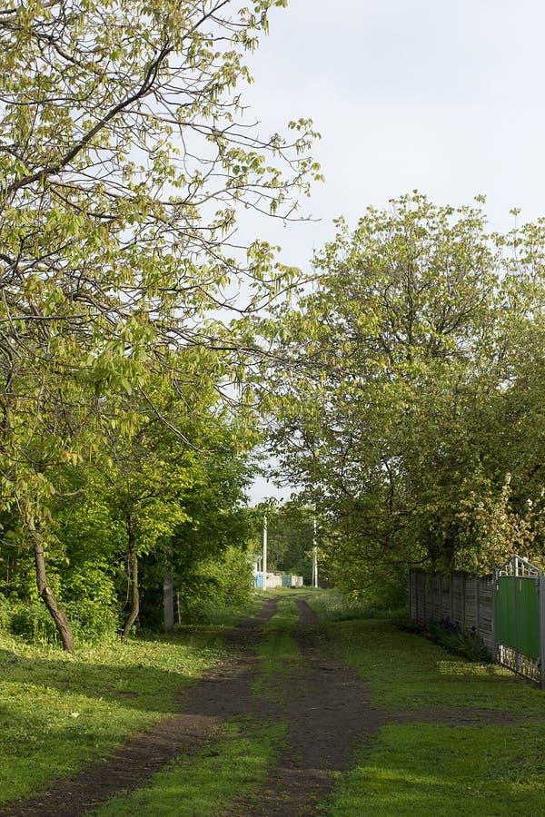 Weg ongeplaveid dorp stock foto