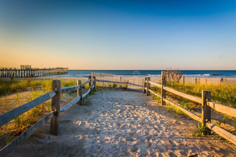 Weg over zandduinen aan de Atlantische Oceaan bij zonsopgang in Ventnor royalty-vrije stock fotografie