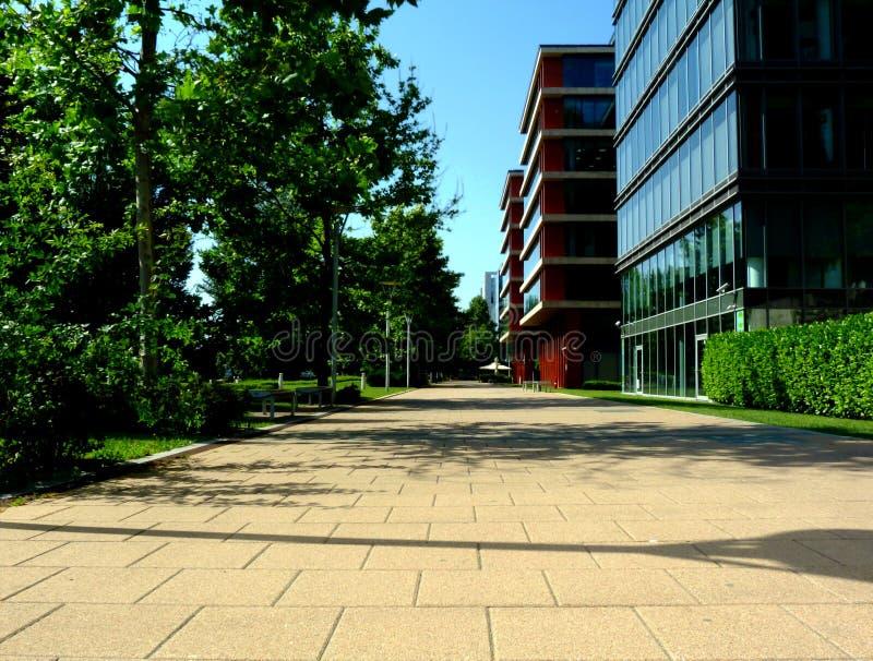 Weg in stedelijk milieu met weelderige groene bomen en haag en de moderne gebouwen van het glasbureau stock foto