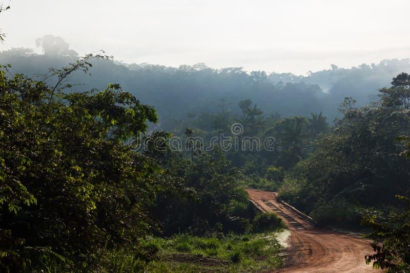 Weg trans-uit de Amazone in Brazilië royalty-vrije stock foto