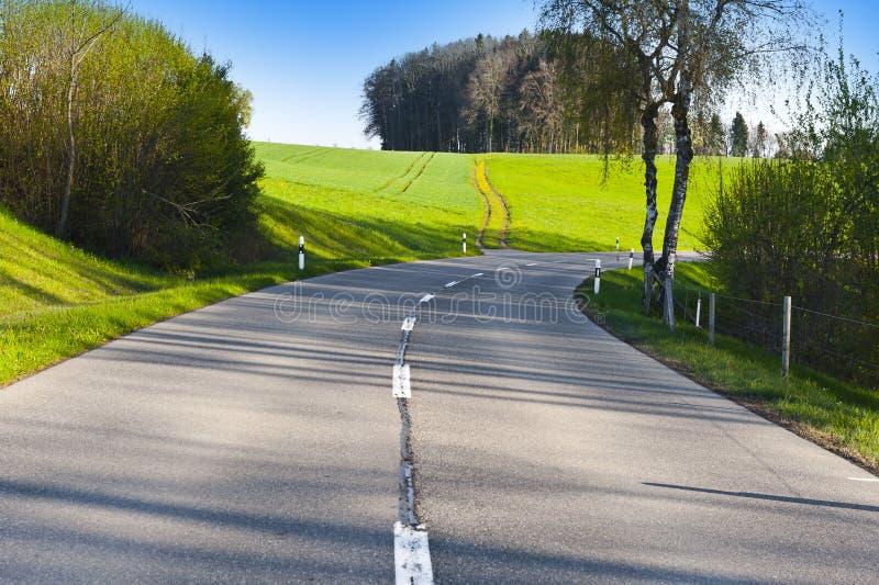 Weg tussen weilanden in Zwitserland royalty-vrije stock afbeelding