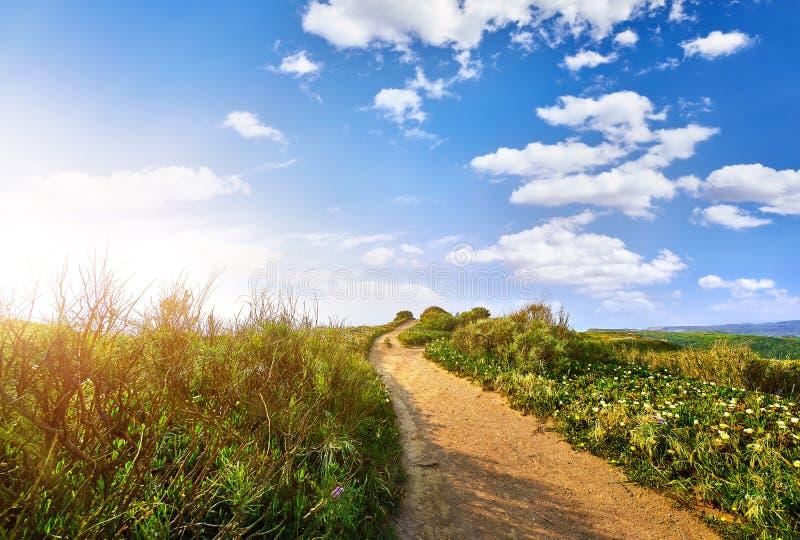 Weg unter Feldern mit der Führung des grünen Grases lizenzfreie stockbilder