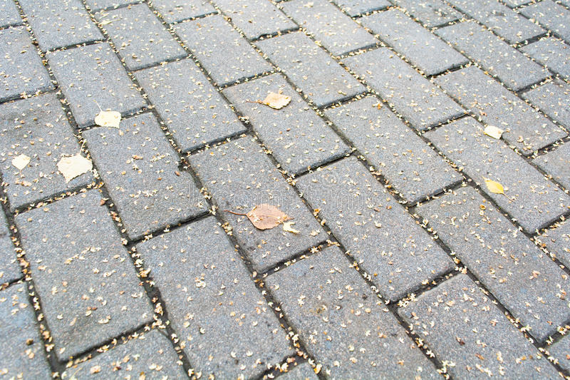 Weg van baksteenstenen die in de herfst wordt bedekt Cobble achtergrond royalty-vrije stock afbeeldingen