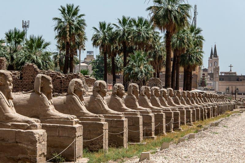 Weg van de Hoofdtempel van Sfinxenkarnak in Luxor, Egypte stock afbeelding