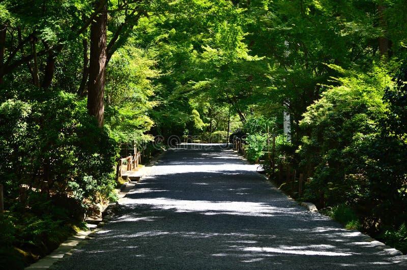 Weg van Japanse tuin, Kyoto Japan stock afbeelding