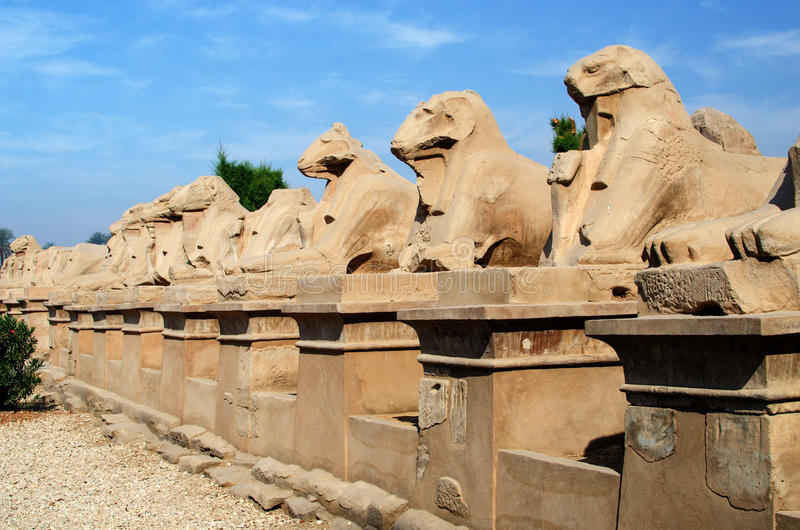 Weg van sfinxen in Gebied van amun-Re (Karnak-Complexe Tempel, Luxor, Egypte) stock afbeelding