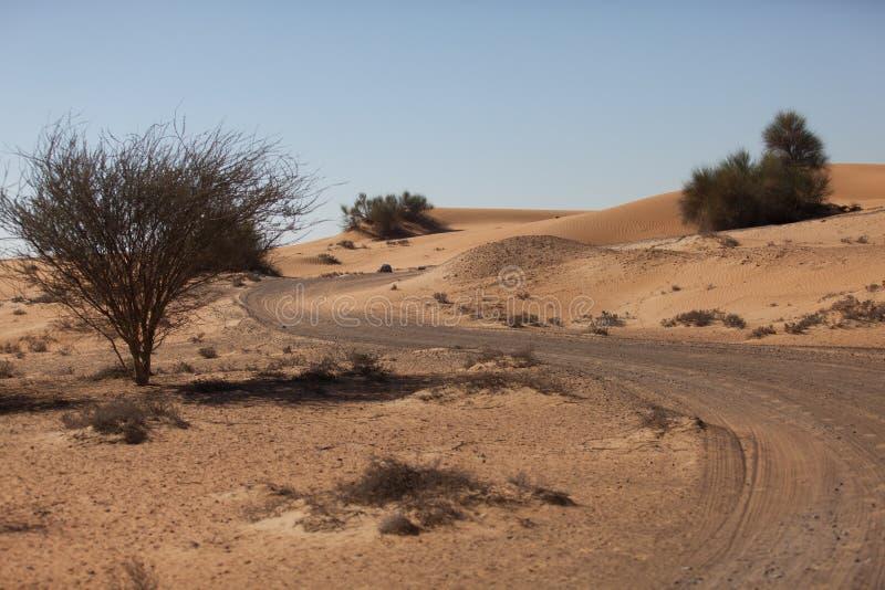 Weg in woestijn royalty-vrije stock foto's