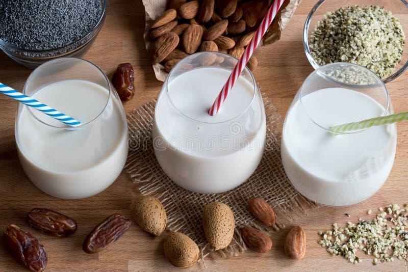 Weganin rośliny mleko migdału mleko, makowego ziarna ziarno m -, dojny i konopiany zdjęcia royalty free