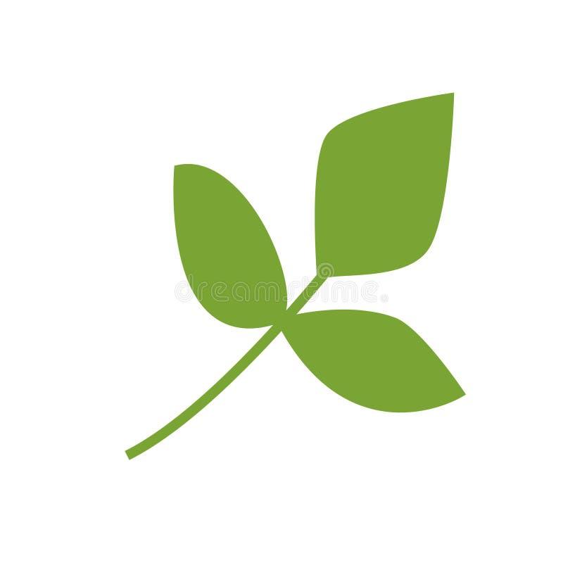 Weganinu wektoru ikona Zieleń liście, gałąź abstrakcjonistyczna wektorowa ilustracja R?ka rysuj?cy minimalizmu styl ilustracja wektor