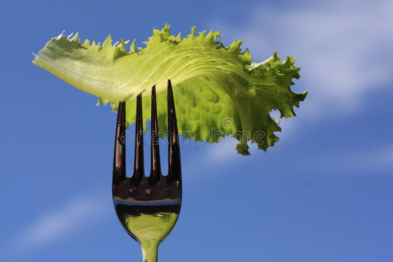 wegetarianizm obrazy stock
