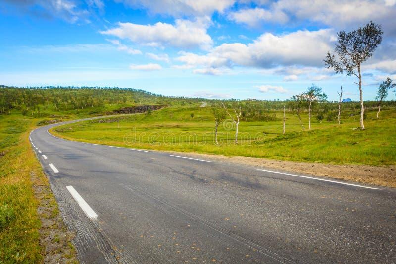 Weglandschap in Noorse heuvelbergen stock fotografie