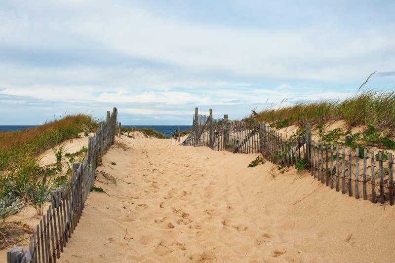 Wegmanier aan het strand in Cape Cod royalty-vrije stock afbeelding