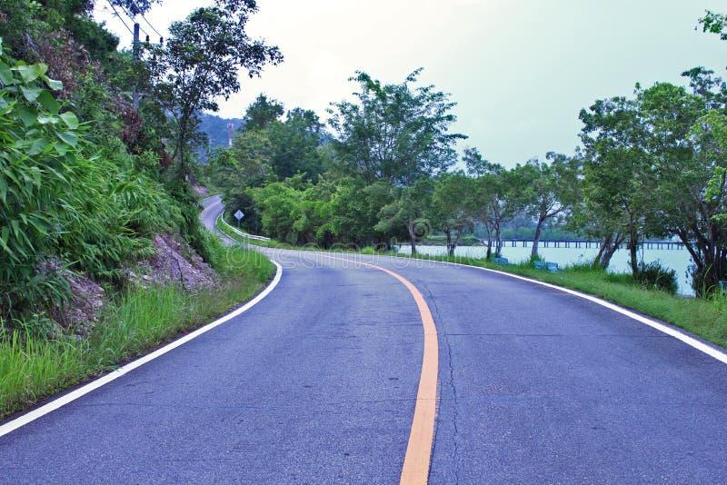 Wegmanier Asphalt Curved Yellow Line Sky Forest Background royalty-vrije stock afbeeldingen