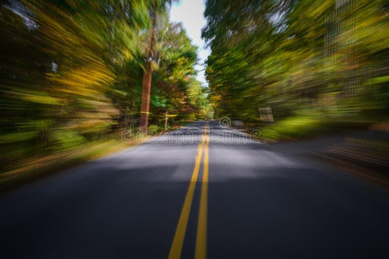 Wegonduidelijk beeld in het bos stock fotografie
