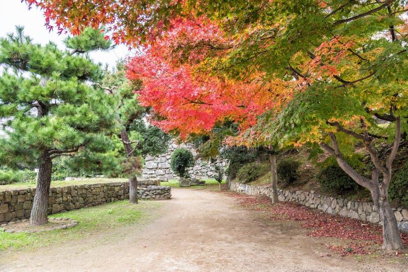 Wegweise im bunten Herbstwald an Himeji-Schloss, Hyogo, Japan stockbilder