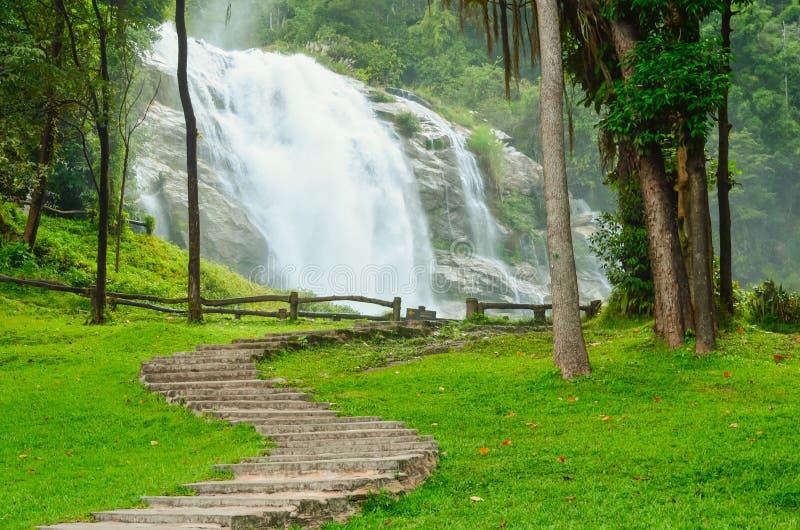 Wegweise im Park und im Wasserfall stockfotos