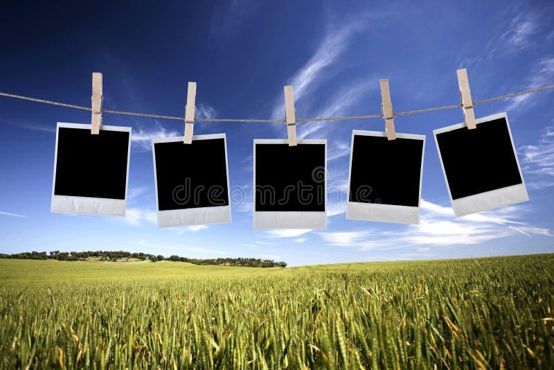 Wegwerfbare Fotofelder, die im Seil hängen lizenzfreie stockfotos