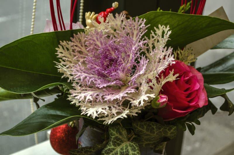 Weiß mit Purpur in der Mitte des dekorativen Koralle-förmigen Kohls mit einer roten Rose und einer Knospe gestaltet mit Efeu und  lizenzfreies stockbild