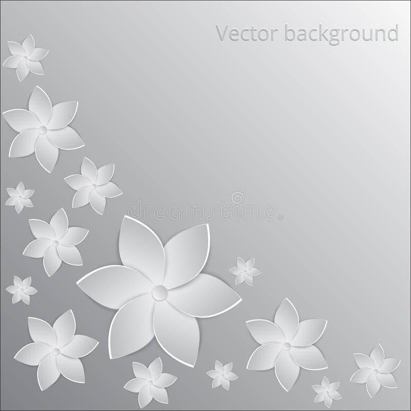 Weißbuch blüht Hintergrund stock abbildung
