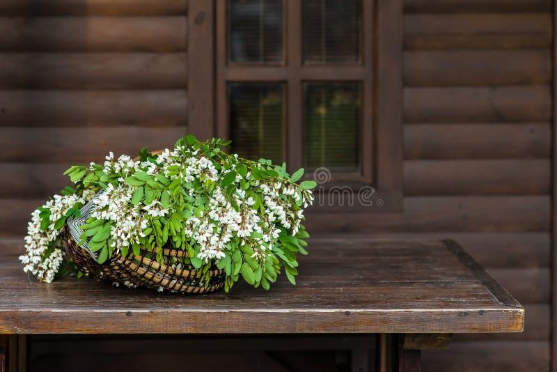 Weiße Akazienblumen mit Blättern liegen in einem Weidenkorb lizenzfreie stockfotos