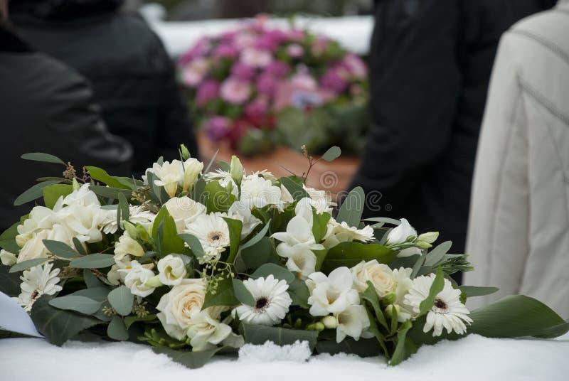 Weiße Begräbnis- Blumen im Schnee vor einem caket stockbild
