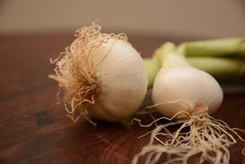 Weiße Bestandteilnahrung der Zwiebeln auf hölzernem Tabellengemüse stockbild