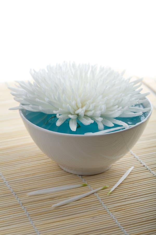 Weiße Blume, die in Schüssel schwimmt. Badekurorthintergrund lizenzfreies stockfoto