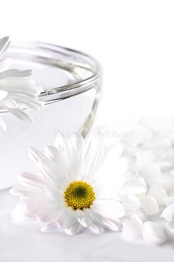 Weiße Blume und eine Schüssel mit Wasser lizenzfreies stockfoto