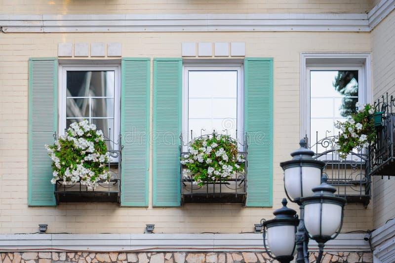 wei e blumen auf einem balkon vor dem fenster stockbild bild von floral blume 68337895. Black Bedroom Furniture Sets. Home Design Ideas