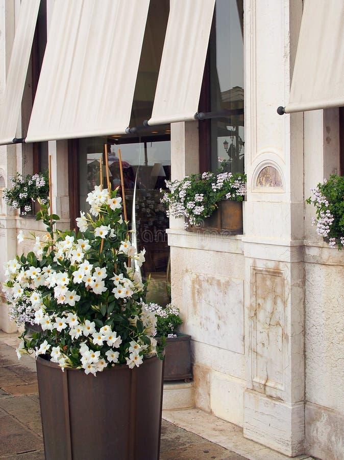 Weiße Blumen In Den Töpfen Außerhalb Des Venetianischen Shops ...