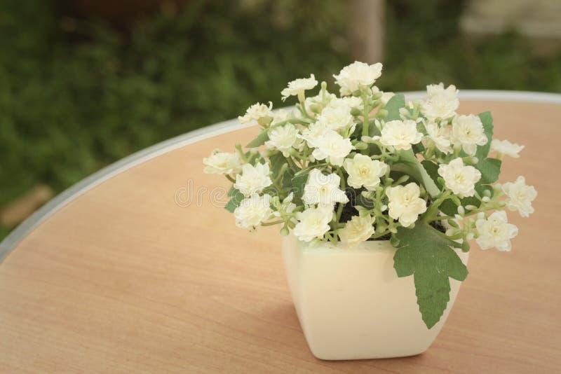 Weiße Blumen In Den Töpfen Auf Dem Tisch Stockbild - Bild von ...
