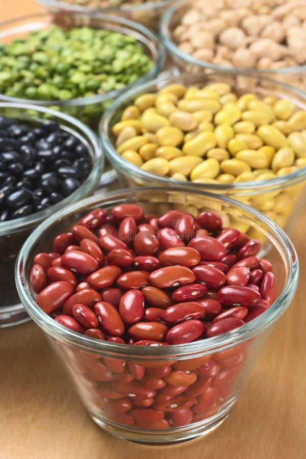 Weiße Bohnen und andere Hülsenfrüchte stockbild