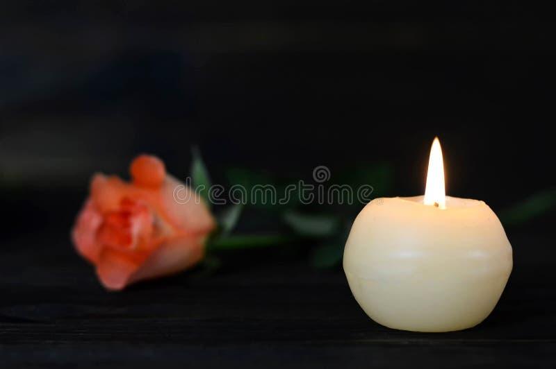Weiße brennende Kerze und Rose stockbilder
