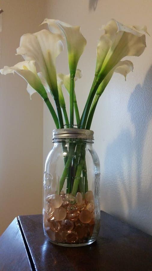 Weiße Calla-Lilien lizenzfreie stockbilder