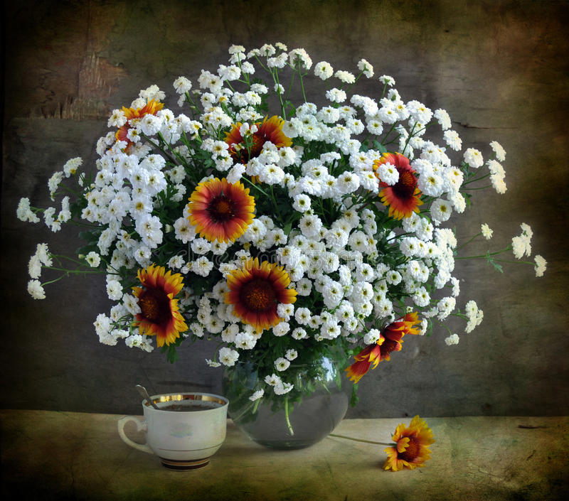 Weiße Chrysanthemen lizenzfreie stockfotografie