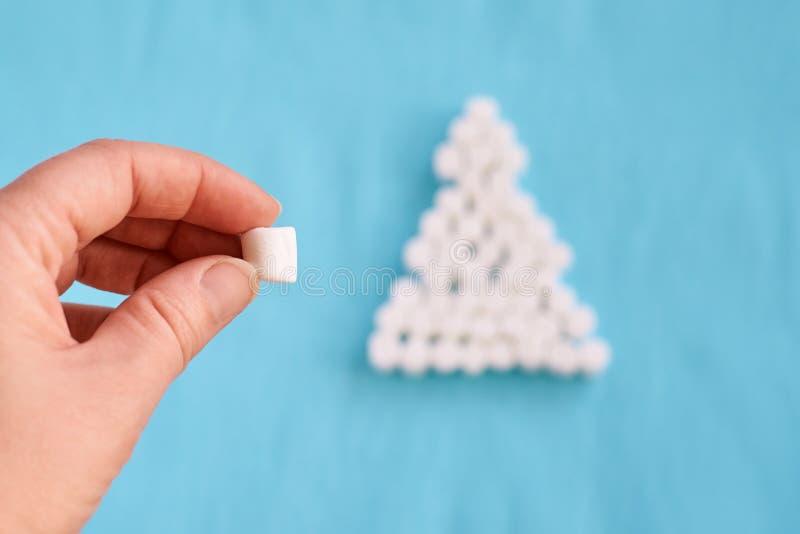 Weiße Eibische Interessanter Baum Hintergrund für eine Einladungskarte oder einen Glückwunsch stockfotos