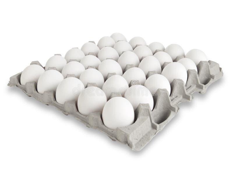 30 weiße Eier stockfotografie