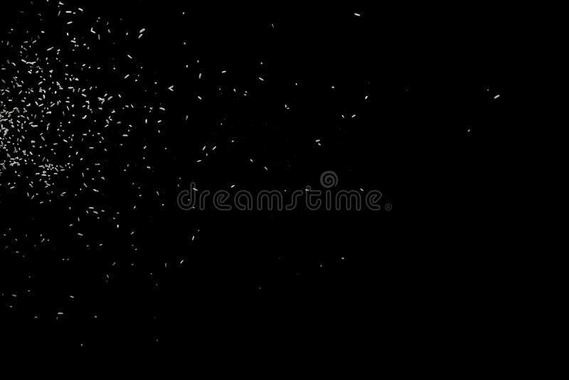 Weiße fallende runde Form der Partikel auf schwarzem backround Gl?hender Blizzard Streuung, die ringsum Partikel f?llt lizenzfreie stockfotos