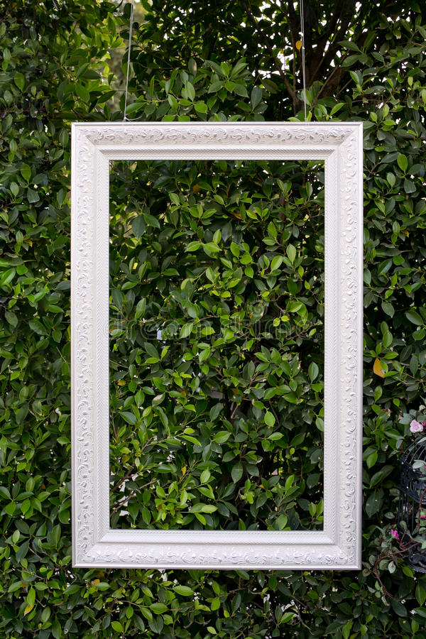 Weiße Farbhängender Fotorahmen lokalisiert auf grünen Blättern lizenzfreies stockbild