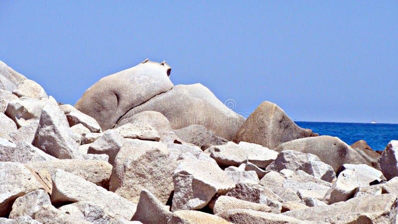 Weiße Felsen lizenzfreie stockbilder