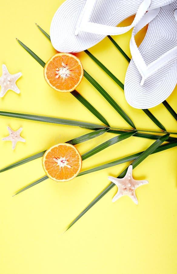 Weiße Flipflops, orange Frucht, Starfish und Palme stockbilder