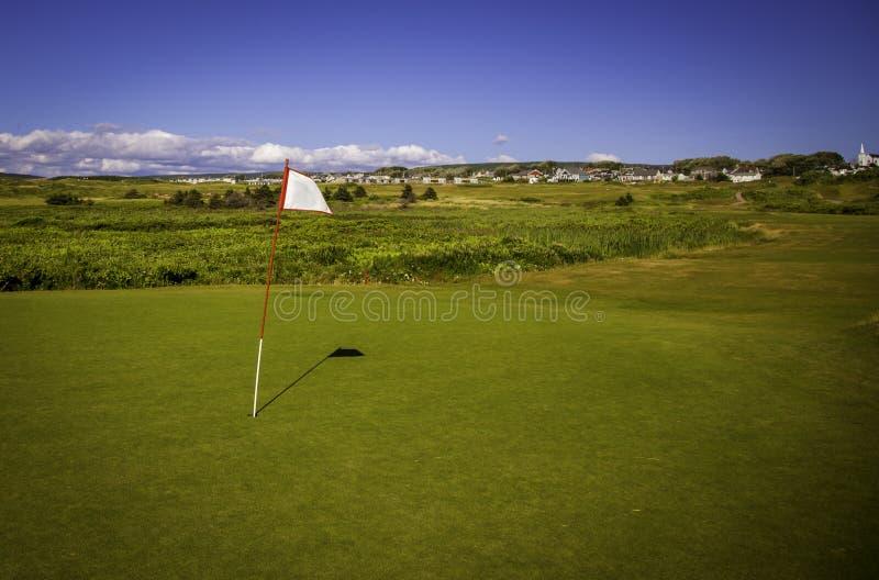 Weiße Golfflagge auf einem Grün stockfoto