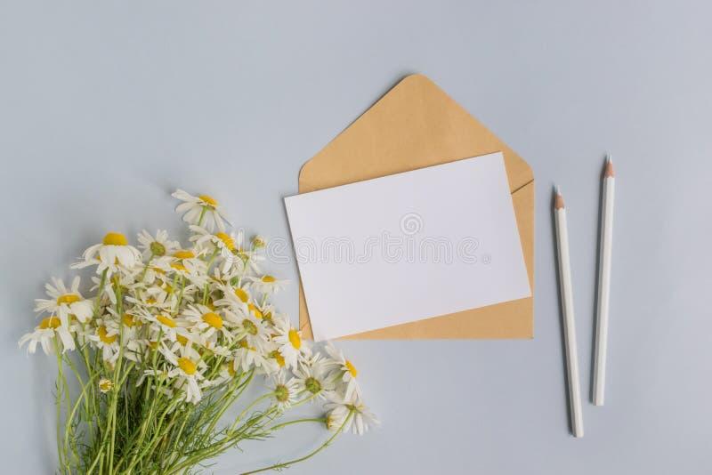 Weiße Grußkarte und -umschlag des Modells mit weißem daisie lizenzfreie stockfotos